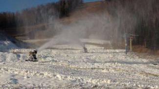 Весна отправляется на запасной путь – в Воронеж приходят морозы