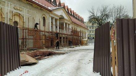 Воронежские общественники попросили губернатора остановить ремонт театра кукол