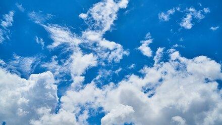 Метеорологи дали прогноз на последнюю полную неделю лета в Воронежской области