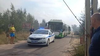Воронежцев решили эвакуировать с турбаз из-за пожара на Кожевенном кордоне