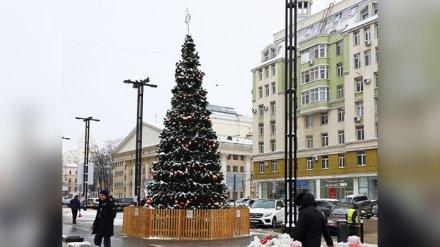 В центре Воронежа поставили новогоднюю ёлку «под напряжением»