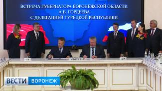 Посол: сотрудничество между Турцией и Воронежской областью будет двусторонним