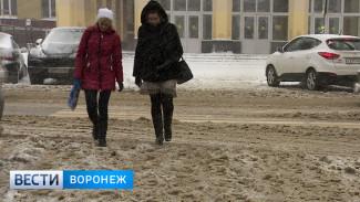 Прокуратура указала на некачественную уборку снега в Воронеже