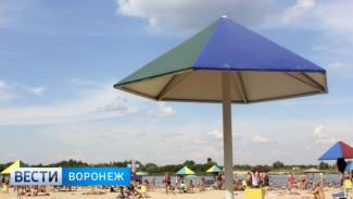 Стало известно, где в Воронеже появится городской пляж