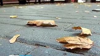 Синоптики предупреждают: на Воронеж движется циклон