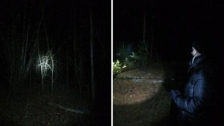 Пропавшую в воронежском лесу старушку спустя двое суток нашли живой