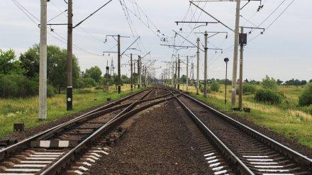 В Воронежской области электричка зацепила идущего вдоль путей 14-летнего подростка