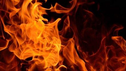 В Воронежской области пожары унесли две жизни за сутки