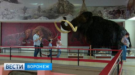 Воронежцев приглашают отметить День археолога в Костёнках