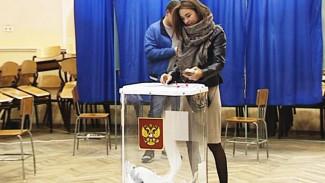 Картина дня выборов в Воронежской области в фактах и лицах