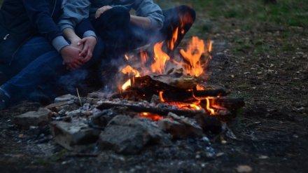 В Воронежской области официально разрешили жечь костры и въезжать в хвойные леса