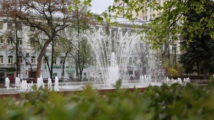 В Воронеже завершился сезон фонтанов
