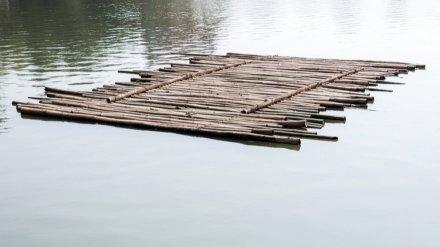 На реке Воронеж перевернулся плот с 7 взрослыми и 3 детьми