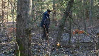 Тёплая одежда и селфи. Что поможет воронежским грибникам не потеряться в лесу