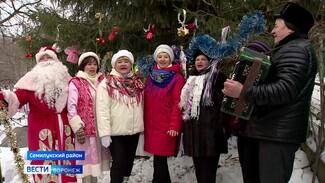В Семилуках подвели итоги онлайн-проекта «В ожидании новогоднего чуда»