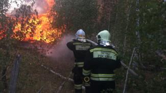 Крупный пожар на военном полигоне под Воронежем локализовали спустя сутки