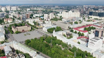 Воронежская облдума приступила к публикации отчётов о пятилетней работе