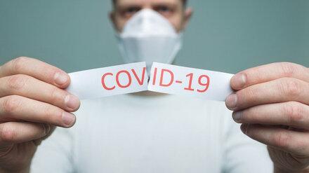 В Воронежской области ещё 311 человек победили COVID-19