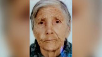 В Воронежской области пропала 88-летняя бабушка