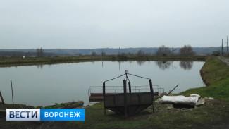 Воронежские рыбоводы добились отмены арендной платы за земли под водоёмами