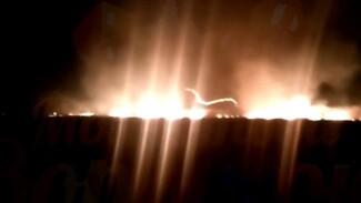 Мощный пожар в поле в Воронежской области сняли на видео