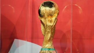 Кубок мира по футболу прибыл в Воронеж