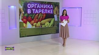 Дорого, но полезно. Как Воронежская область вышла в лидеры по производству органической еды