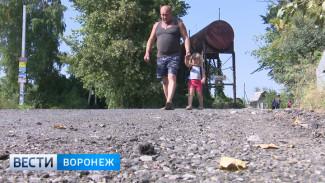 Воронежские дачники сторожили долгожданный асфальт, чтобы его не разворовали
