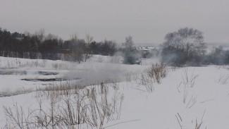 Спасатели рассказали, как избавиться от запаха гари в Воронеже