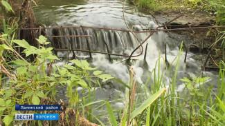 Жители воронежского села боятся, что чиновники лишат их пруда