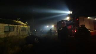 Под Воронежем ликвидировали пожар у Новоживотинного