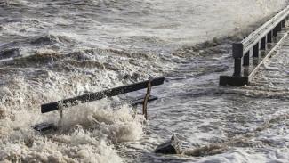 Первый прямой рейс в затопленный Сочи вылетит из Воронежа в субботу