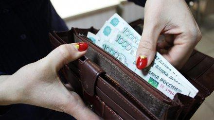 Статистики сообщили о значительном снижении зарплат в Воронежской области