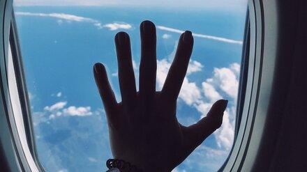 Летевший из Дубая частный самолёт с треснувшим стеклом сел в Воронеже