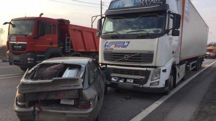 Под Воронежем водитель фуры спровоцировал массовое ДТП с пострадавшим
