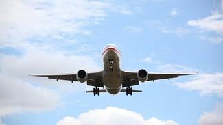 Самолёт из Воронежа экстренно сел в Москве из-за неисправного шасси