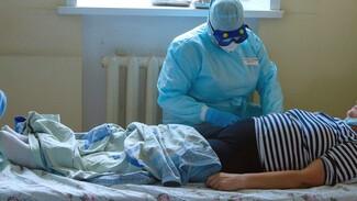 За сутки от коронавируса умерли 8 воронежцев
