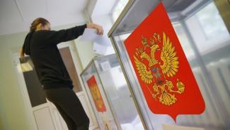 В Воронеже на выборах губернатора за семь часов проголосовали всего 13% избирателей