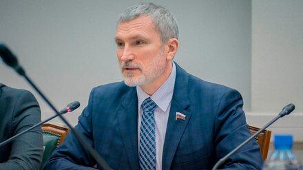 Воронежский депутат Госдумы предложил запустить экономику национального возрождения