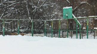 Мэрия Воронежа отчиталась о работе несуществующих катков