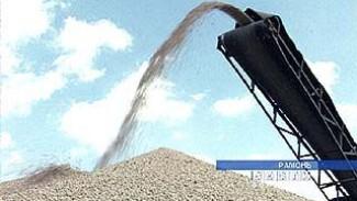 Стартовали закупочные интервенции на российском рынке зерна