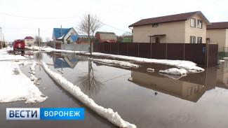 Само растаяло – само высохнет. Как Воронеж справляется с долгожданной оттепелью