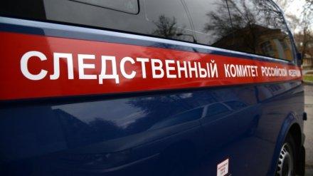 В Воронежской области молодую женщину убило током