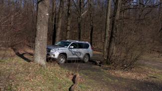В Центральном парке Воронежа устроят охоту за паркующимися на газонах водителями