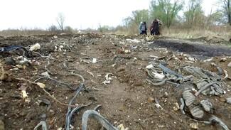 Жителей села под Воронежем оштрафуют за проложенную из мусора дорогу