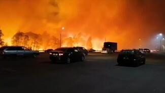 Без комментариев. Как Воронежскую область дважды за 7 дней накрыл огненный шторм