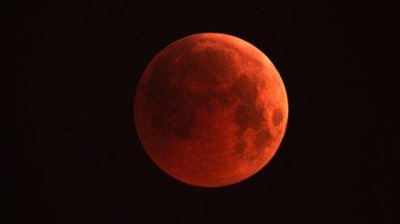 Воронежский астрофотограф показал роскошные кадры затмения Луны