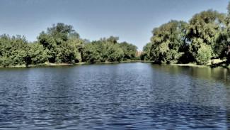Под Воронежем утонула 17-летняя девушка, спасая двух подруг