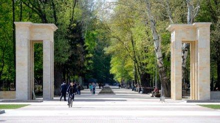 В Воронеже временно закроют все парки