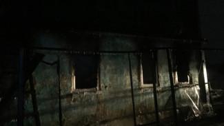 Малыш в Воронежской области сгорел после того, как мать уговорила полицию оставить его в семье